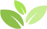 FDE logo (0__02).png