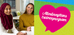 Allmannyttans_traineeprogram_traineeguiden_250-120.jpg
