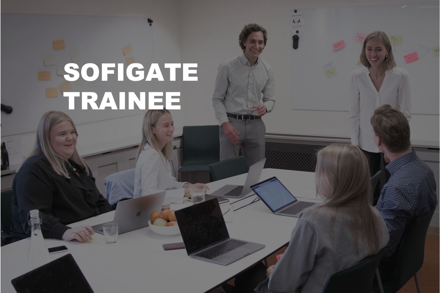 Sofigate Trainee Banner_2.0.png